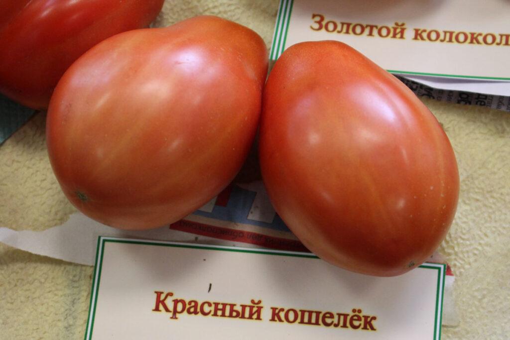 Томат 'Красный кошелек' (Sakiewka Czerwona)